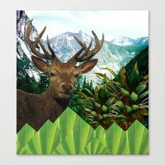 Cervo Canvas Print