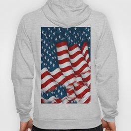 "ORIGINAL  AMERICANA FLAG ART ""STARS N' BARS"" PATTERNS Hoody"