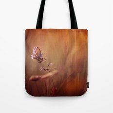 Wonders of a sunset Tote Bag