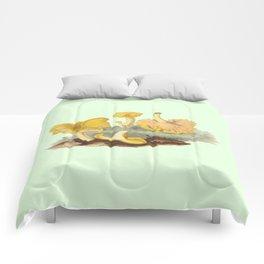 Cantharellus Cibarius Comforters