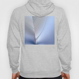 Fractal ice crystals at freezing point Hoody