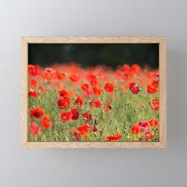 Poppy Meadow Framed Mini Art Print