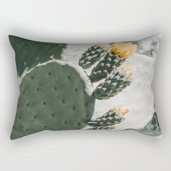 flowering cactus i by adrienneleonard