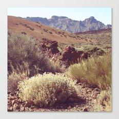 Mount Teide Canvas Print