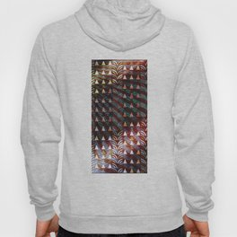 Enticing Radiance Hoody