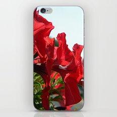 In Unison iPhone & iPod Skin