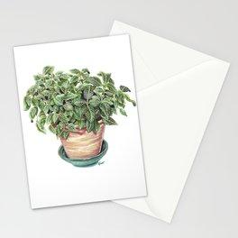 Potted Juanita Nerve Plant Marker Illustration Stationery Cards