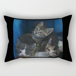 1, 2 & 3 of 8 DPG150830a Rectangular Pillow