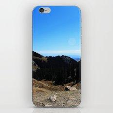 Dome iPhone & iPod Skin