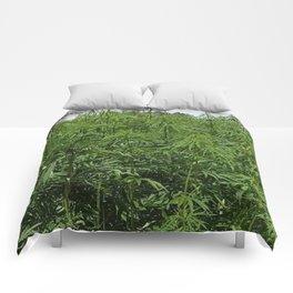 marihuana Comforters