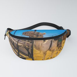 Camels In Colours Fanny Pack