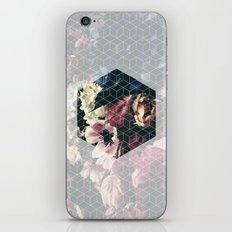 Spring Geometry iPhone & iPod Skin