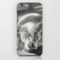 Dog Friend iPhone 6s Slim Case