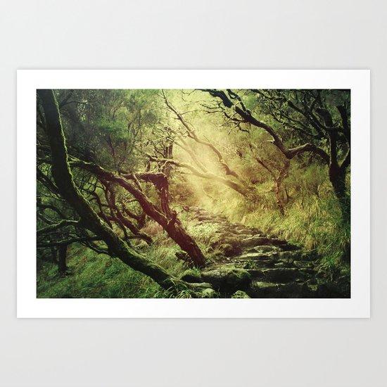 through darkness & light Art Print