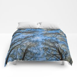 Reach for the Sky Comforters