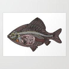 italian fish Art Print