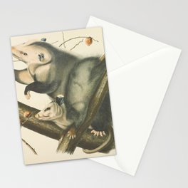 Vintage Illustration of Mother and Baby Possum - John James Audubon - 1840 Stationery Cards