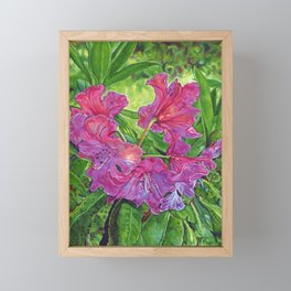 Pink Rhodo Framed Mini Art Print