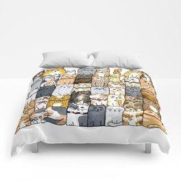 The Glaring Comforters