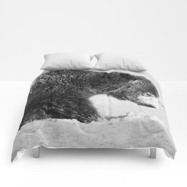 Alaskan Grizzly Bear in Snow, B & W - I Comforters