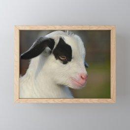 Baby Goat Portrait Framed Mini Art Print