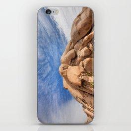 Joshua Tree Rocks iPhone Skin