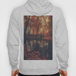 Where are you? Autumn Fall - Autumnal forest Hoody