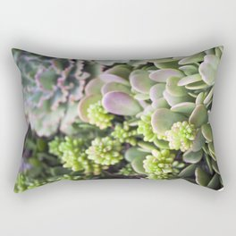 Blushing Succulents Rectangular Pillow
