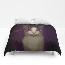 Gambit Comforters
