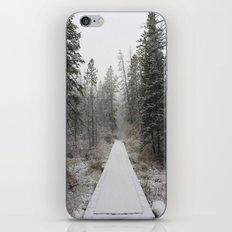 Silverthorne, CO iPhone & iPod Skin