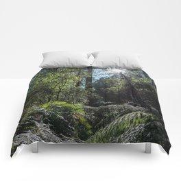 Rainforest Walk Comforters