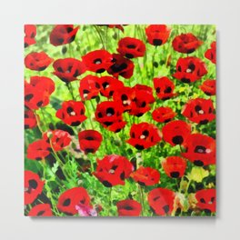 Poppies 4 Metal Print