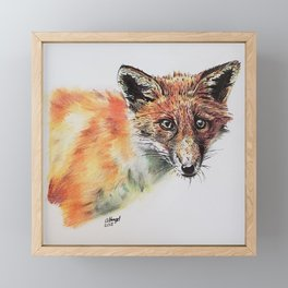 The Concerned Fox Framed Mini Art Print