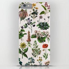 vintage botanical print iPhone Case