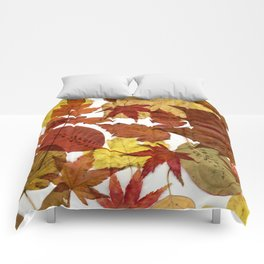 Autumn / Fall copper & gold leaves in English park - Oak, Beech Comforters