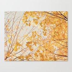 Autumn Orange Canvas Print