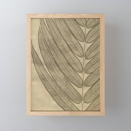 Naturalist Leaf Framed Mini Art Print