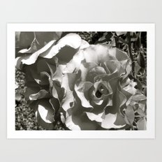 Places in Black & White: Sacramento 1 Art Print