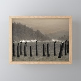 Columbia River Cormorants Birds Framed Mini Art Print