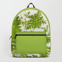 Pelargonium citrosum plant foliage macro Backpack