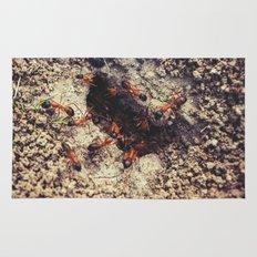Ants Rug