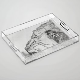 The Fairytale about the Wolf, Bear, and the Lion Acrylic Tray