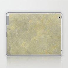 Modern Masters Metallic Plaster - Aged Gold and Silver Fox - Custom Glam Laptop & iPad Skin