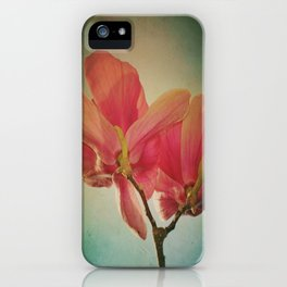 Vintage Spring Flowers iPhone Case