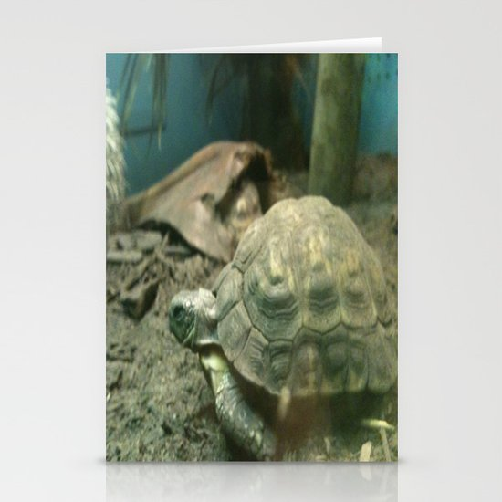 Giant Turtle Stationery Cards