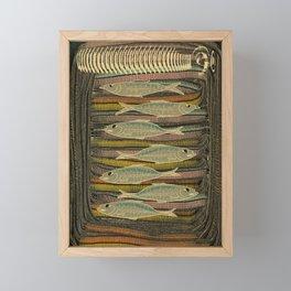Serendipity / Herrings 1 Framed Mini Art Print