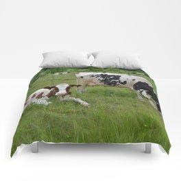 Wisconsin Life Comforters