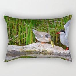 Baby Arctic Tern Feeding Rectangular Pillow