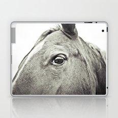 Eye of the Horse Laptop & iPad Skin