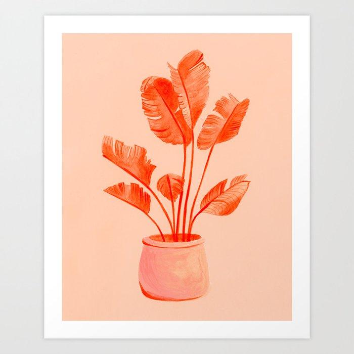 Coral Banana Plant Art Print